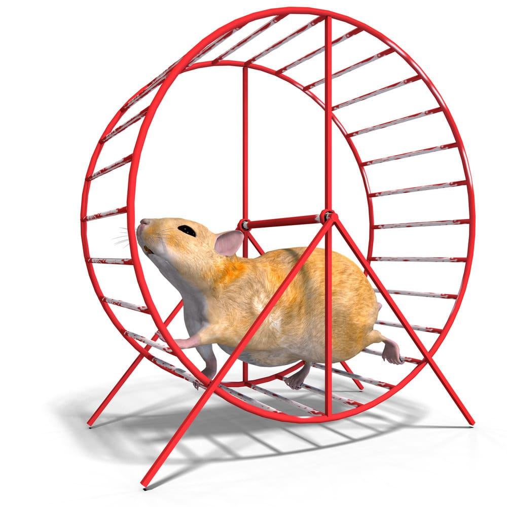 rationalization hamster at work