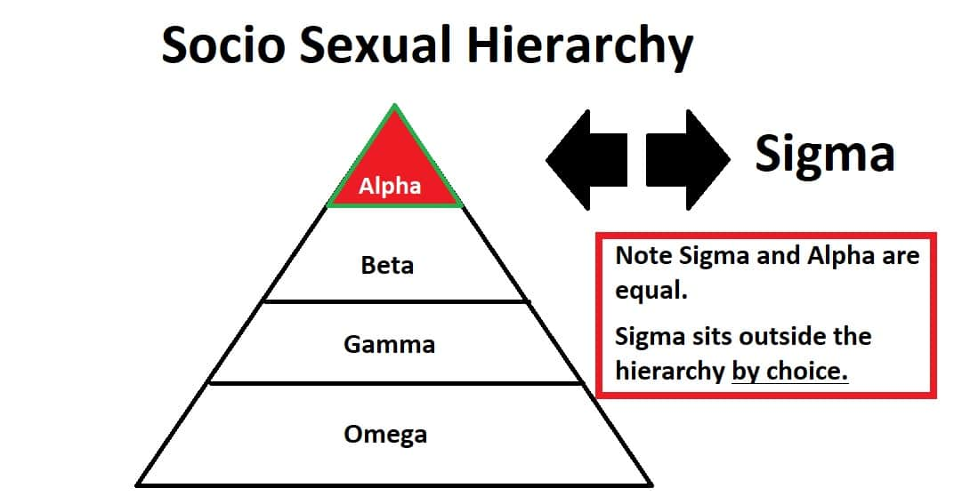 socio sexual hierarchy