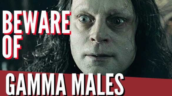 Gamma Male Archetype : All You Need To Know