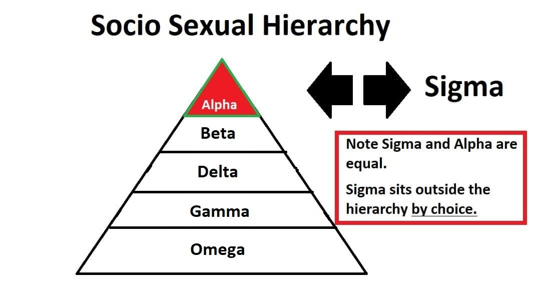 Socio Sexual Hierarchy Ver 2