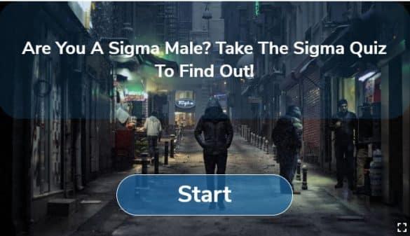 Take The Sigma Male Quiz!!